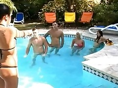 Thrilling cock sucking with wicked sweethearts